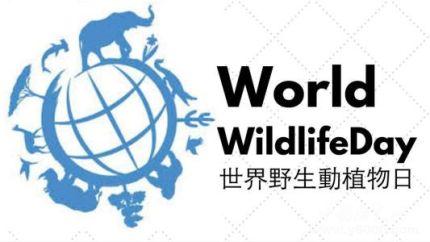 世界野生动植物日简介世界野生动植物日主题活动有哪些?