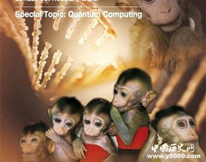 世界首例生物节律紊乱体细胞克隆猴模型诞生有什么作用